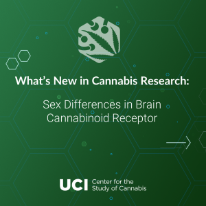 Sex Differences in Brain Cannabinoid Receptor