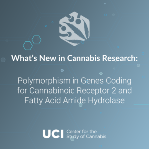Polymorphism in Genes Coding for Cannabinoid Receptor 2 and Fatty Acid Amide Hydrolase