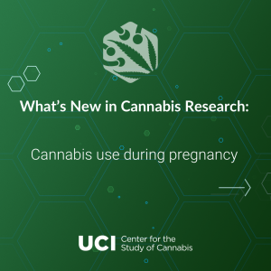 Cannabis use during pregnancy